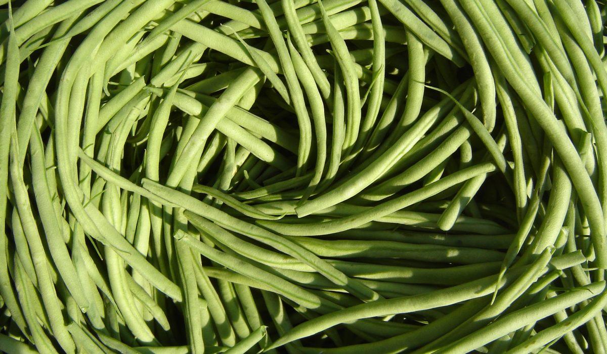 Une alimentation équilibrée et bonne pour le climat