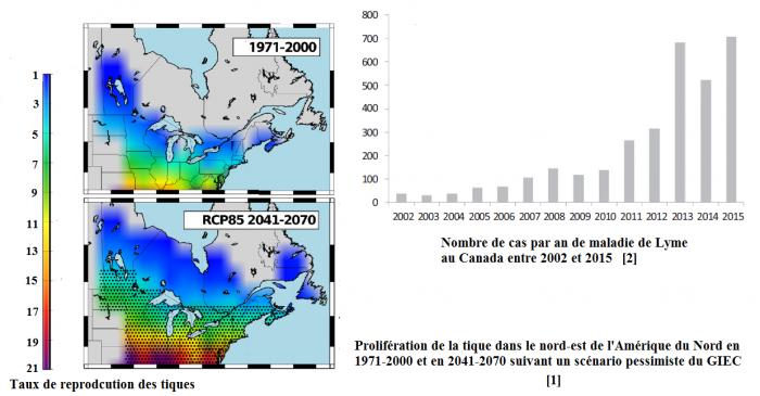 proliferation-de-la-tique-nord-est-amerique-du-nord-et-maladie-de-lyme-canada