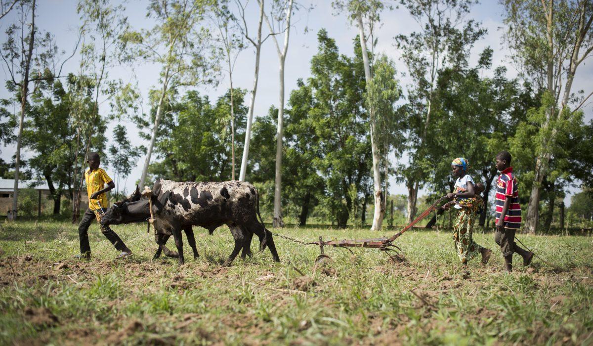 Togo – Dapaong. ©ElodiePerriot
