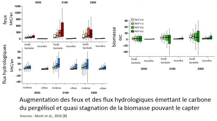 augmentation-des-feux-et-des-flux-hydrologiques-et-stagnation-de-la-biomasse