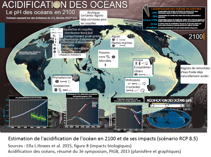 estimation-de-lacidification-de-locean-en-2100-et-de-ses-impacts