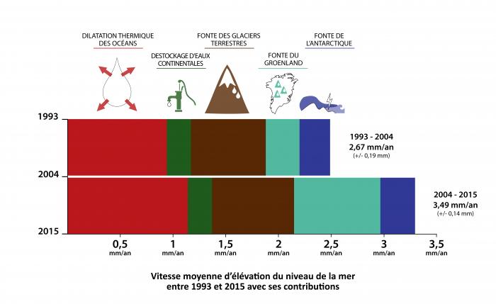 elevation-du-niveau-de-la-mer-1993-2015-contributions-a-la-vitesse