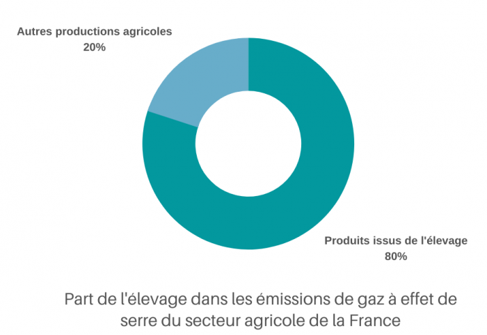 elevage-80-emissions-secteur-agricole-fr